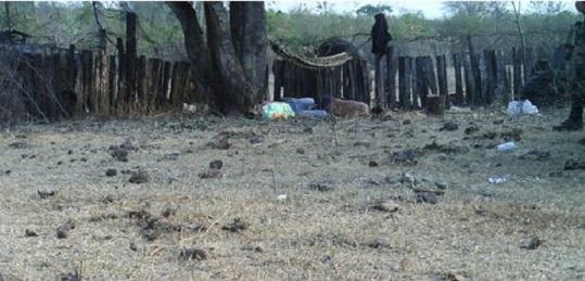 EL BRASIL DE LAS LUCHAS POR LA TIERRA. Un informe de la Comisión Pastoral de la Tierra denuncia un fuerte aumento de la violencia en 2016 y anticipa que 2017 será peor