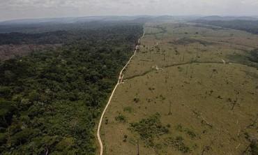 A DESTRUIÇÃO DA AMAZÔNIA (E NOSSA). O desmatamento está aumentando. Só em 2016 foi devastada uma área equivalente a sete vezes cidade do Rio de Janeiro.