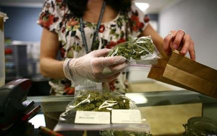 """""""AQUÍ SE VENDE MARIHUANA"""". Desde el miércoles próximo el cannabis se podrá comprar en las farmacias de Uruguay. Pero no hay demasiado entusiasmo"""