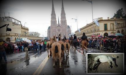 Cinco caballos muertos en las últimas peregrinaciones