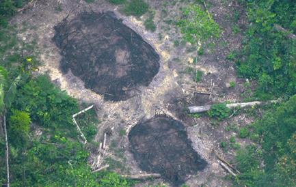Casas comunitarias de indígenas no contactados, quemadas y descubiertas en diciembre de 2016  (Foto FUNAI)