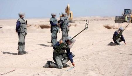 FRONTERAS LATINOAMERICANAS EN DESARME. Chile ha desminado el 80% de su frontera con Bolivia. Quedan 26.000 artefactos antipersonales y antitanque para eliminar