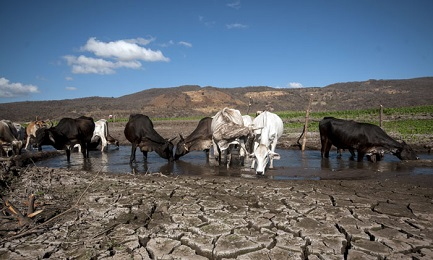 NICARAGUA ADHIERE AL ACUERDO SOBRE EL CAMBIO CLIMÁTICO. Estados Unidos y Siria son los únicos que no lo suscribieron
