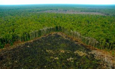 UM SÍNODO QUE RESPONDE A TODOS. É o da Amazônia que se realizará em Roma em outubro de 2019. São planejados novos caminhos para evangelizar os povos indígenas.