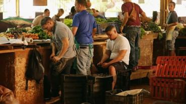 PASTASCIUTTA ITALIANA PARA PALADARES CUBANOS. Lasaña, canelones y ravioles: Cuba e Italia crean una joint venture para producir pastas frescas